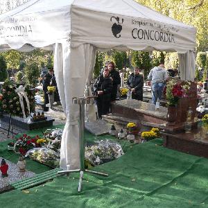 kompleksowe usługi pogrzebowe concordia